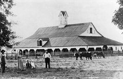 A 1906 photograph of the McNaughton Barn