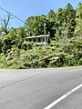 Meadow Fork Road and North Carolina State Highway 209, Bluff, NC (50528043758).jpg