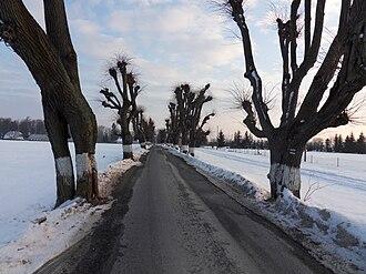 Melč - Image: Melč, alej panoramio