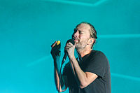 Melt Festival 2013 - Atoms For Peace-38.jpg