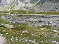 Mengusovská dolina, Vysoké Tatry (44).JPG