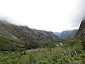 Milford Sound Hwy, South Island (483039) (9482310501).jpg