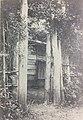 Mimizuno tahakoto-koshunen-gate.jpg