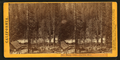 Miner's Cabin, American River. (no. 617), from Robert N. Dennis collection of stereoscopic views.png