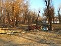 Mohyliv-Podilskyi city park 10.jpg