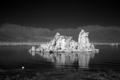 Mono Lake, California LCCN2010630777.tif