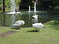 Monte Palace Tropical Garden DSCF0150 (4642506371).jpg