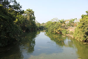 Mopan River - Mopan River at Bullet Tree Falls