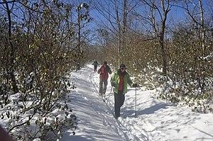 Mount Davis (Pennsylvania) - Image: Mount Davis, Pennsylvania 10