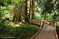Mount Rainier National Park, Washington (22692118834).jpg
