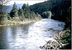 Section of the Moyie River in Eastport