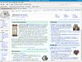 Mozilla Firefox 3.0.1 Fedora enwiki.png