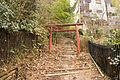 Mt.Sengen (Hakone) 12.jpg