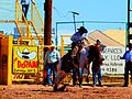 NAVAJO COUNTY FAIR 2011.jpg