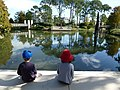 NOMA Sculptures Lagoon.jpg
