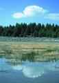 NRCSMT01082 - Montana (5011)(NRCS Photo Gallery).tif
