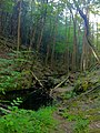 Narragansett Trail - Green Fall River ravine south of Green Fall Pond.jpg