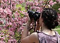 Natalya @ Boffins - Photo Adventure Day - USCAD Creative Digital Photography Class - May 23 2015 (18065874331).jpg