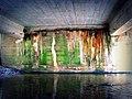 Natural Graffiti (4529534936).jpg
