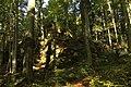 Nature reserve Ptaci stena in autumn 2011 (30).JPG