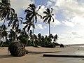 Natureza em desequilíbrio - panoramio.jpg