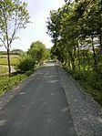 Neuer Radweg auf alter Nebenbahn (7240185184).jpg