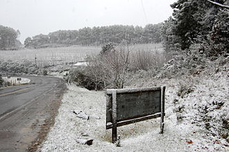 Winter - Snow in São Joaquim in the state of Santa Catarina in the south of Brazil