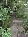 New Whittington - Footpath View of Brook Crossing and Steps - geograph.org.uk - 865004.jpg