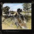 Ngoni Warrior, Nyasaland, Africa, ca.1875-ca.1940 (imp-cswc-GB-237-CSWC47-LS16-048).jpg