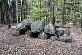 Niedersachsen, Lamstedt, im Naturschutzgebiet NIK 2748.JPG