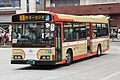 NishiTokyoBus D20326 Summerland.JPG