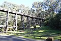 Noojee Trestle Bridge 007.JPG