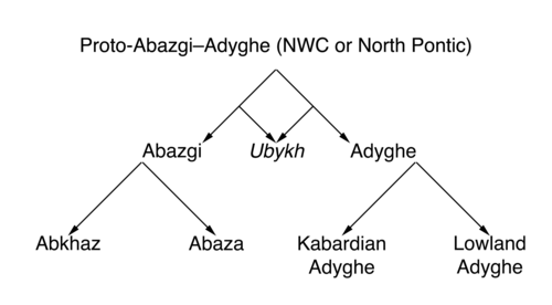 Northwest Caucasian languages.png