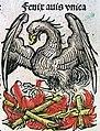 Nuremberg chronicles - Phoenix (CIIIIv).jpg