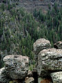 Oak Creek Canyon 05.jpg