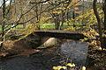 Odenthal - Naturschutzgebiet Dhünnaue - Dhünn 05 ies.jpg