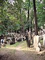 Old Jewish Cemetery, Prague 001.jpg