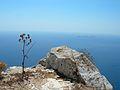 On Kalamos mountain2.jpg