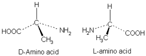 Organic Chemistry/Chirality - Wikibooks, open books for an open world