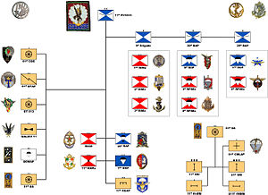 11th Parachute Brigade (France) - Organizational Chart of the 11th Division on July 1, 1966