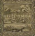 Ori Apollinis Niliaci, De sacris Aegyptiorum notis, Aegyptiacè expressis - libri duo, iconibus illustrati, and aucti - nunc primùm in latinum ac gallicum sermonem conversi (1574) (14559490287).jpg