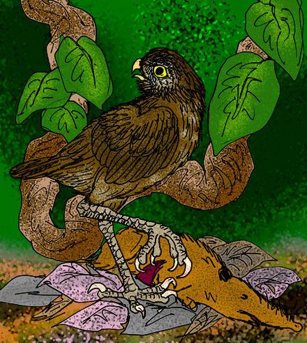 Ornimegalonyx