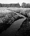 Orzechówka zimą - panoramio.jpg