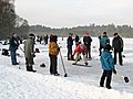 Outdoor curling on Stormont Loch - geograph.org.uk - 1655114.jpg