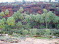 Palm Valley NT.jpg