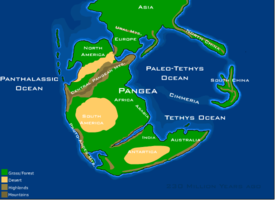 Physical map of the supercontinent Pangaea (~230 million years ago)