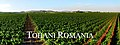 Panorama Tohani (2).jpg