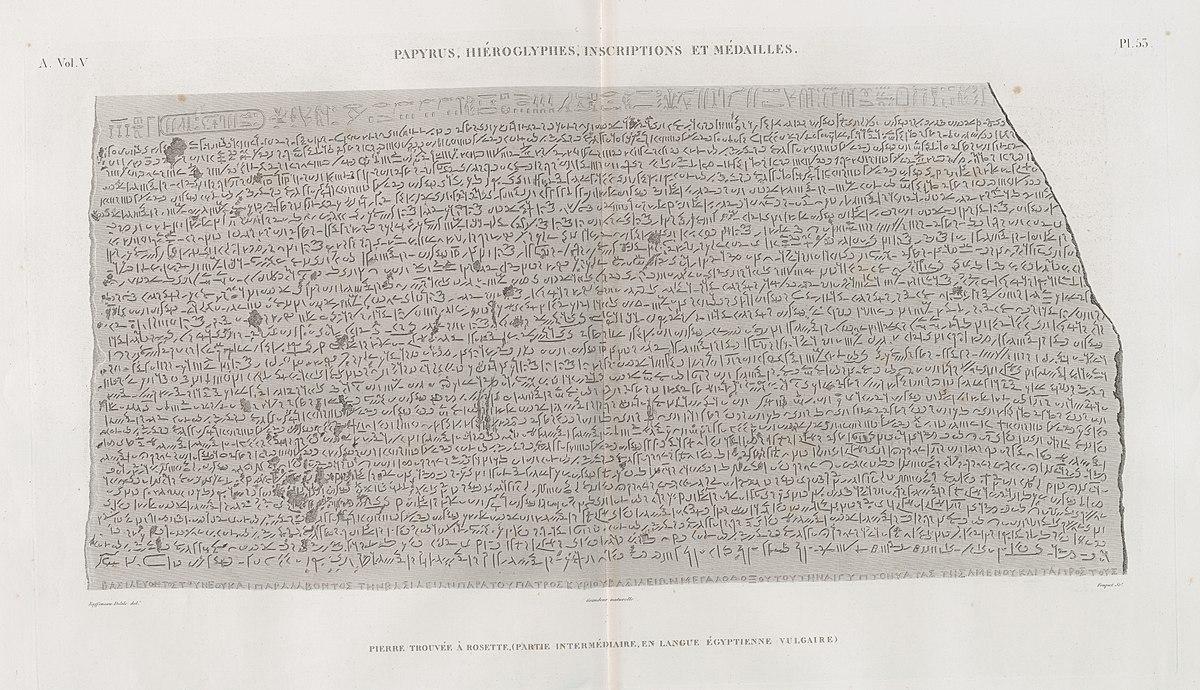 Papyrus, hiéroglyphes, inscriptions et médailles. Pierre trouvée à Rosette, (partie intermédiaire, en langue égyptienne vulgaire) (NYPL b14212718-1268221)