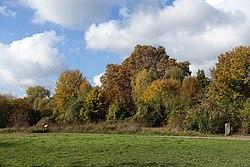 Parc de l'Ile Saint-Germain @ Paris (30184102603).jpg