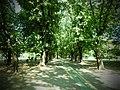 Parcul Herastrau (9463443193).jpg